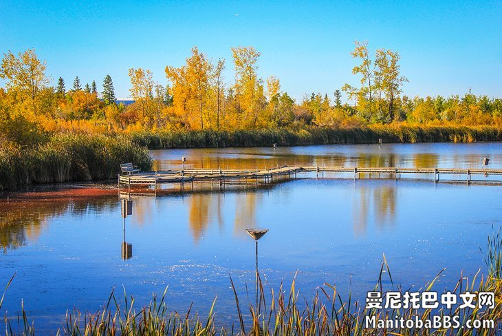 manitoba-winnipeg-attractions-fort-whyte-alive-lake.jpg